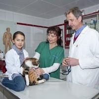Tierarzt Mag. med. vet. Christian Asenstorfer