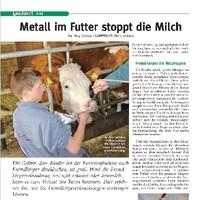Metall im Futter 1