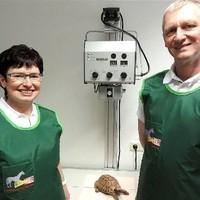 Röntgenuntersuchung Schildkröte