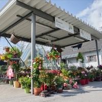 Kuttner Floral und Design GmbH 2