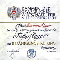 Befähigungsprüfung bestanden 1995