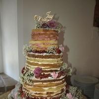 nacked cake 1 20150905 1886160580