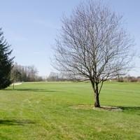 Celtic Golf Club Schärding13