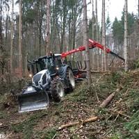 Forstarbeiten Rudi Schabernack1