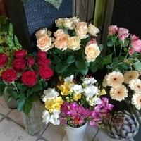 Photos from Edelmann's post