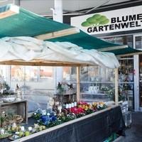 Blumen & Gartenwelt JM11