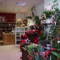 Blumen & Gartenwelt JM1