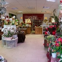 Blumen & Gartenwelt JM3