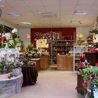Blumen & Gartenwelt JM7