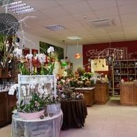Blumen & Gartenwelt JM
