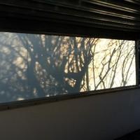 Wind-|Sichtschutz