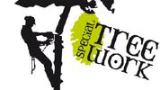 Special Treework  Gebrigsholzernte - Bauabtragungen - Baumpflege