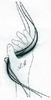 Mühlbacher || Medizinischer Masseur, Heilmasseur, Fußpflege