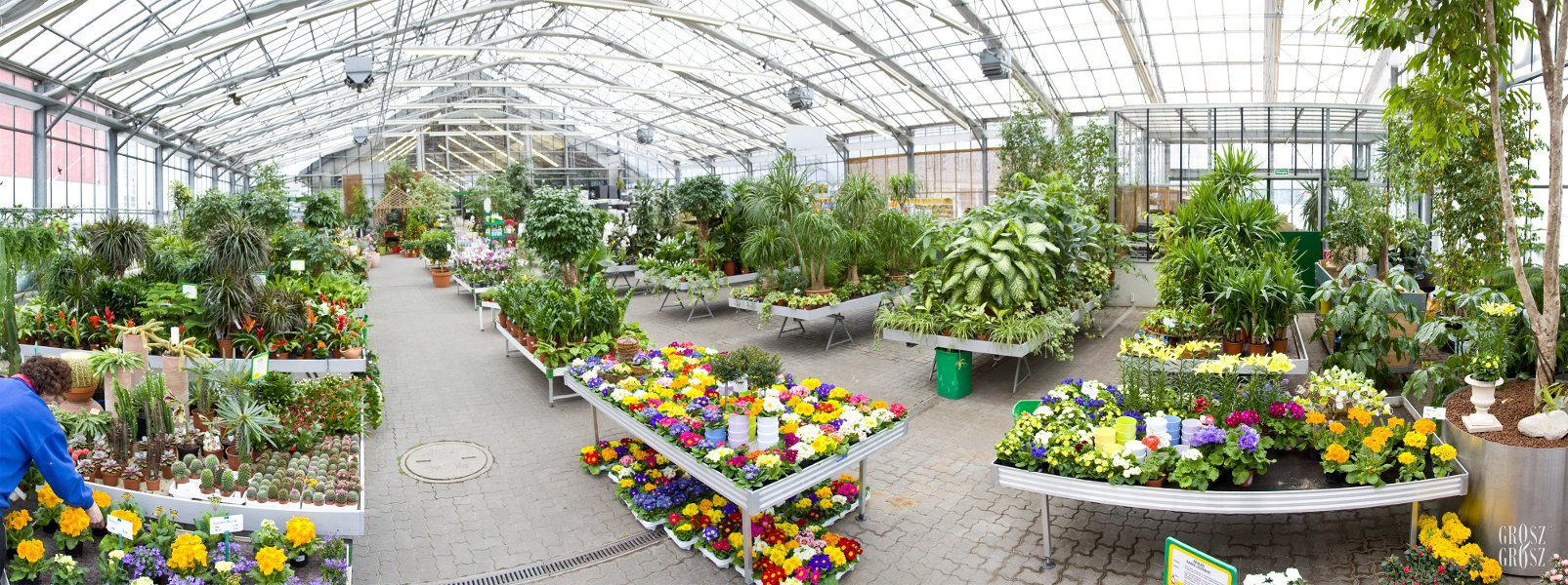 Starkl Gartencenter In V Sendorf Blumen G Rtnerei Gesch Fte Handel