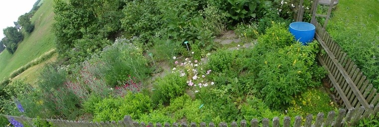 Kräutergarten (3)