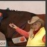 BEMER Vet Horse Model
