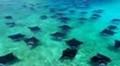Biosphere Reserve Maldives.Baa Atoll