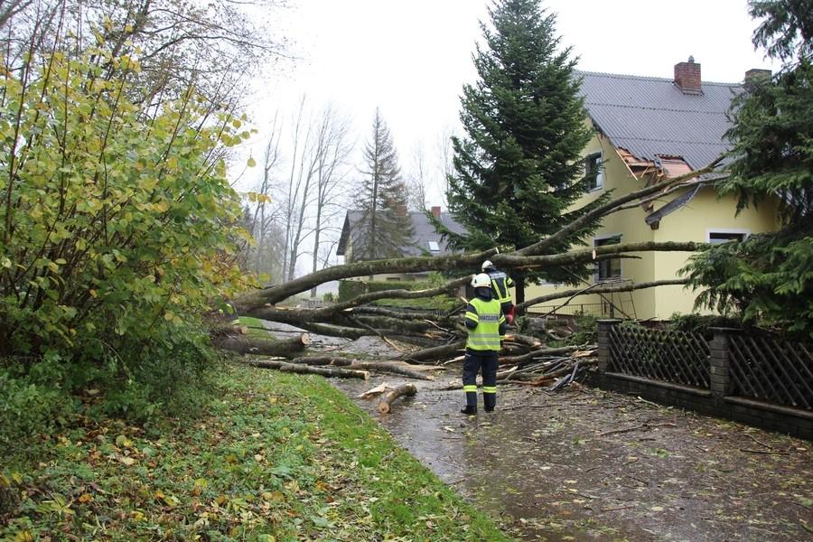 Einsatz: Baum auf Haus