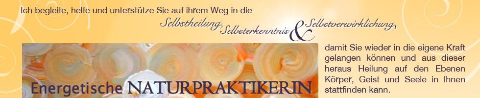 bergsmann banner