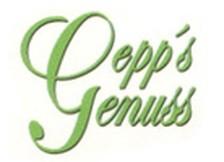 gepps logo Kopie
