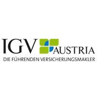 IGV Logo