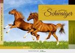 reitstall schwaiger