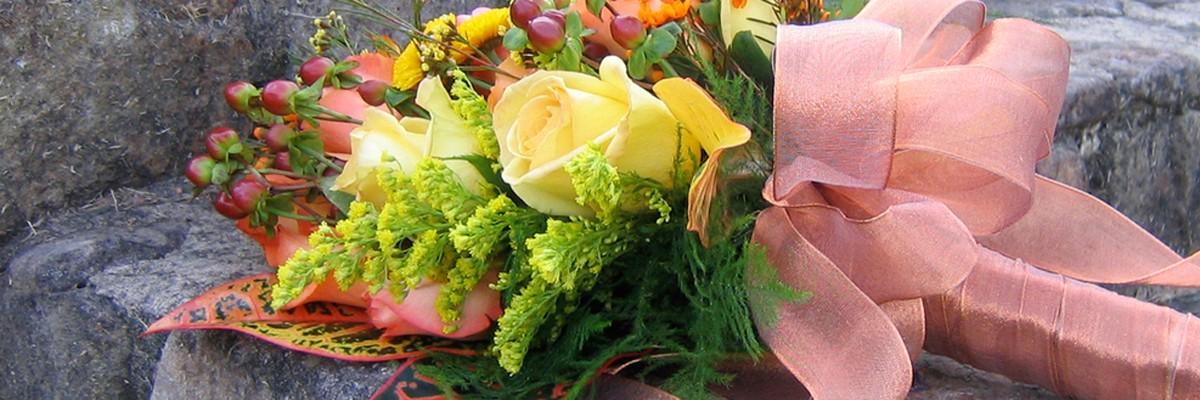 Login (Blumen Rosemarie Bauer)