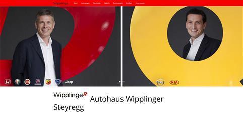 wipplinger steyregg (Individuell)