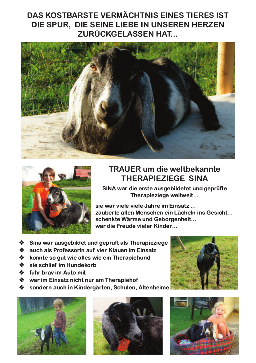 Sina in memoriam