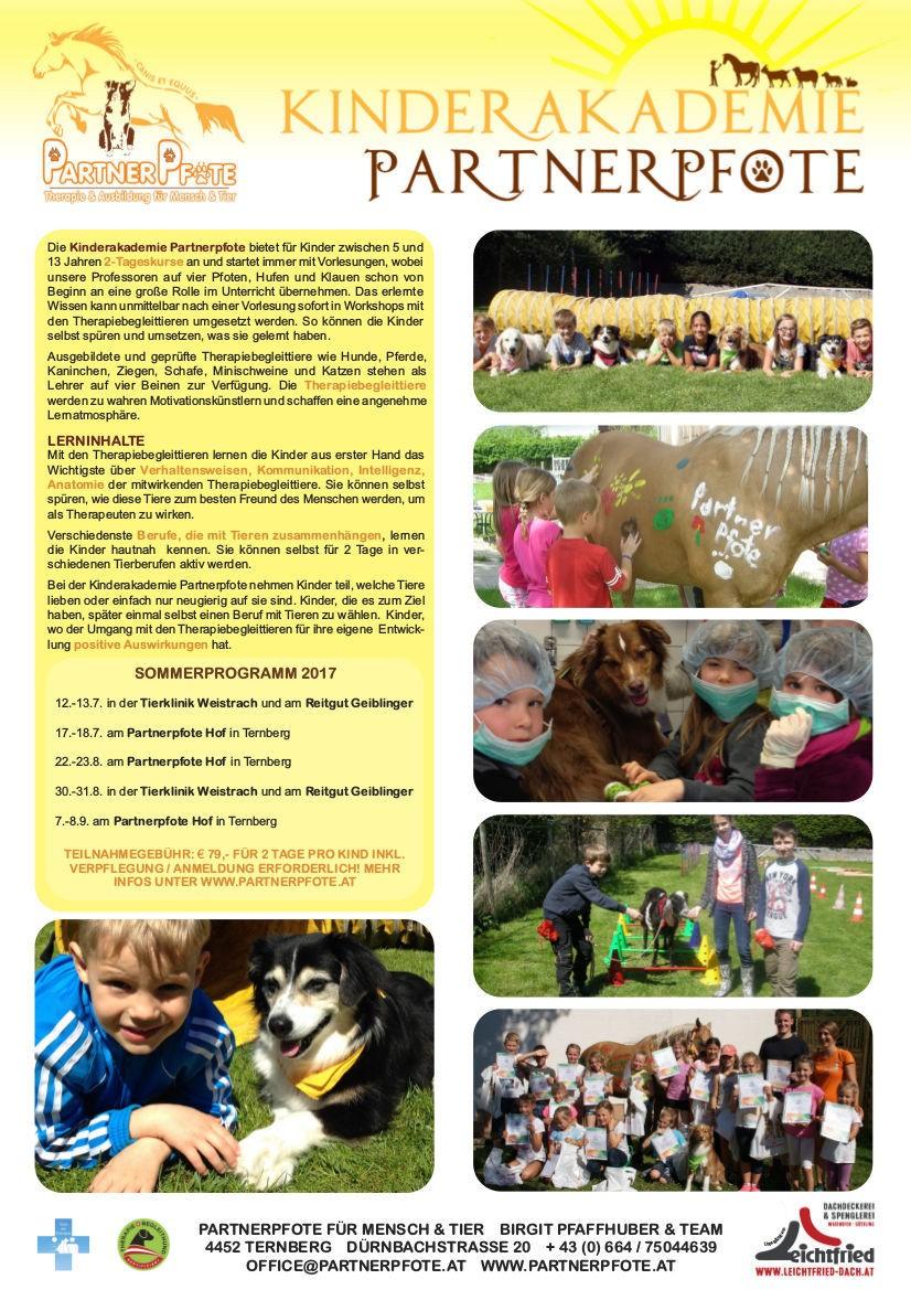 Kinderakademie Partnerpfote Juni 2017