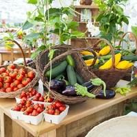 Gartenbau Haimel