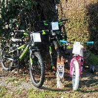 Photos from Fahrradservice-Fernitz's post