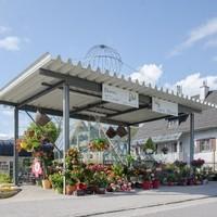 Kuttner Floral und Design GmbH 1