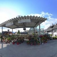 Kuttner Floral und Design GmbH 3