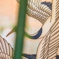Kiwano's cover photo