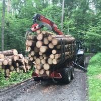Forstarbeiten Rudi Schabernack2