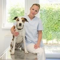 Dr. Regine Volz