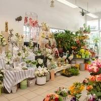 Happy Flower   Floristik & Geschenksartikel11