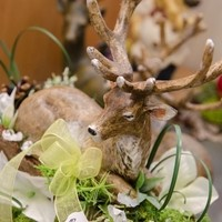 Happy Flower   Floristik & Geschenksartikel25