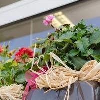 Happy Flower   Floristik & Geschenksartikel4