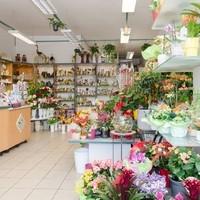 Happy Flower   Floristik & Geschenksartikel6