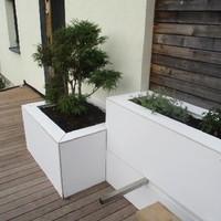Projekt in Königswiesen