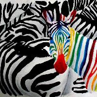Acryl Zebra
