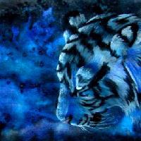 Wasserfarben PrismaColor Tiger