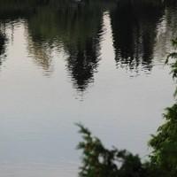 Wasserspiegelung2