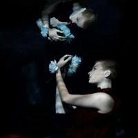 Unterwasserfotografie 5