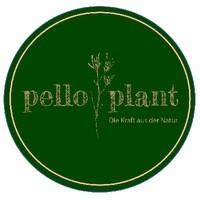 Pello Plant