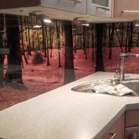 Küchenrückwand mit Digitaldruck (Folie) 2