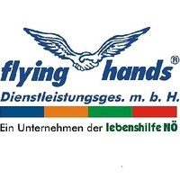 http://www.flyinghands.at/