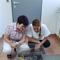Tiergesundheitswoche 2018 (10)